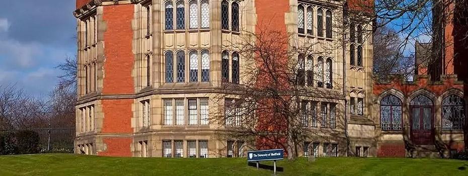 university sheffield